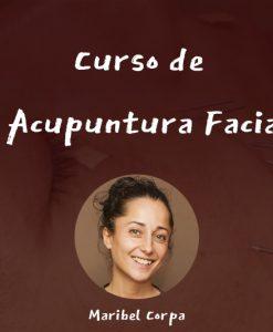 portada curso online acupuntura facial